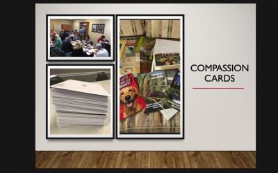 Reaching the Lost: Troubleshooting Your Compassion Card Ministry